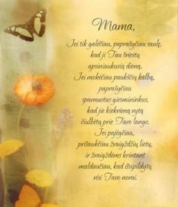 Mamytei